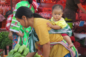 thai-rural-woman-market