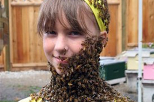 bees-fountain-of-youth