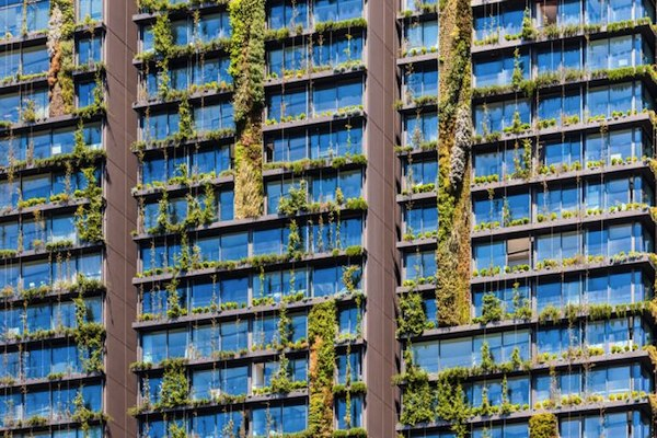 Biomimicry Living Wall