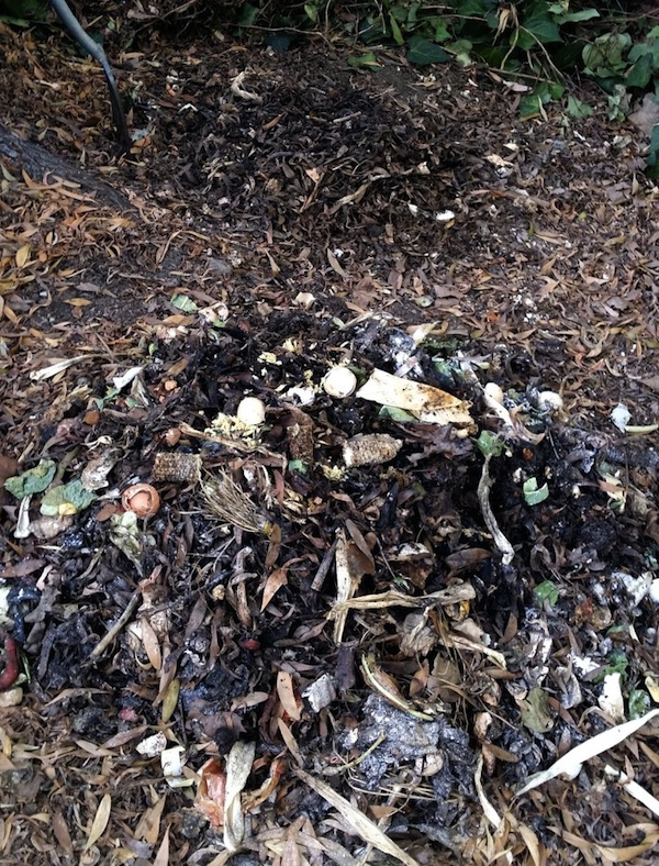 Compost piles in two stages of decomposing.