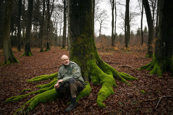 rsz_peter_wohlleben_trees