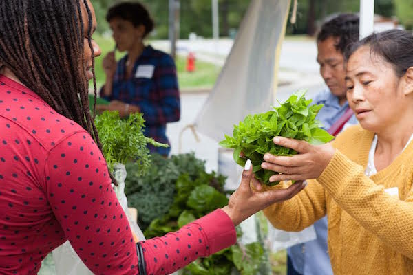 localize_food_farming_industry_women_of_green
