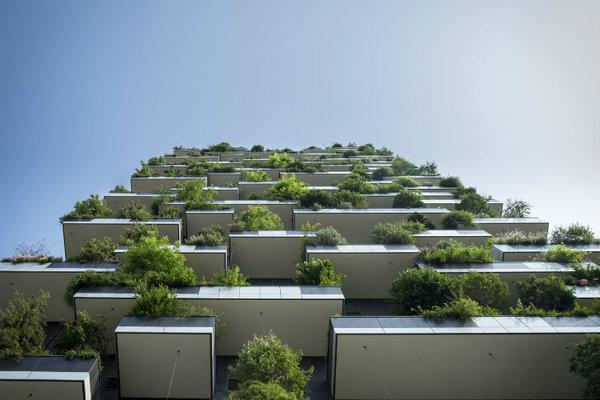 green_building_women_of_green