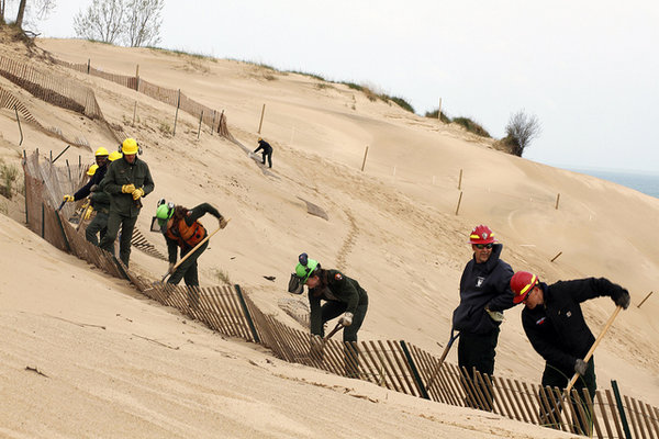 dune_restoration_work_resilience_through_restoration_women_of_green