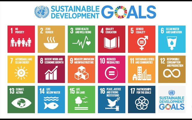sustainable_development_goals_women_of_green