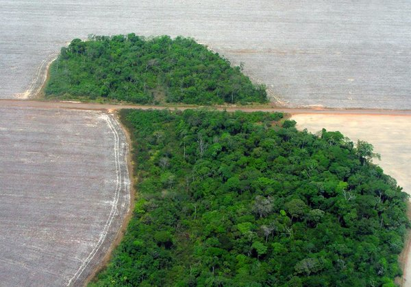 rsz_mato_grosso_deforestation_northwestern_brazil_pedro_biondi_women_of_green