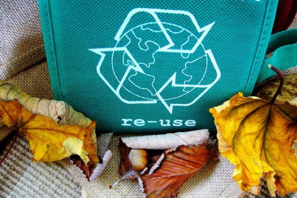 Remember Your Reusable Bags and Save the World