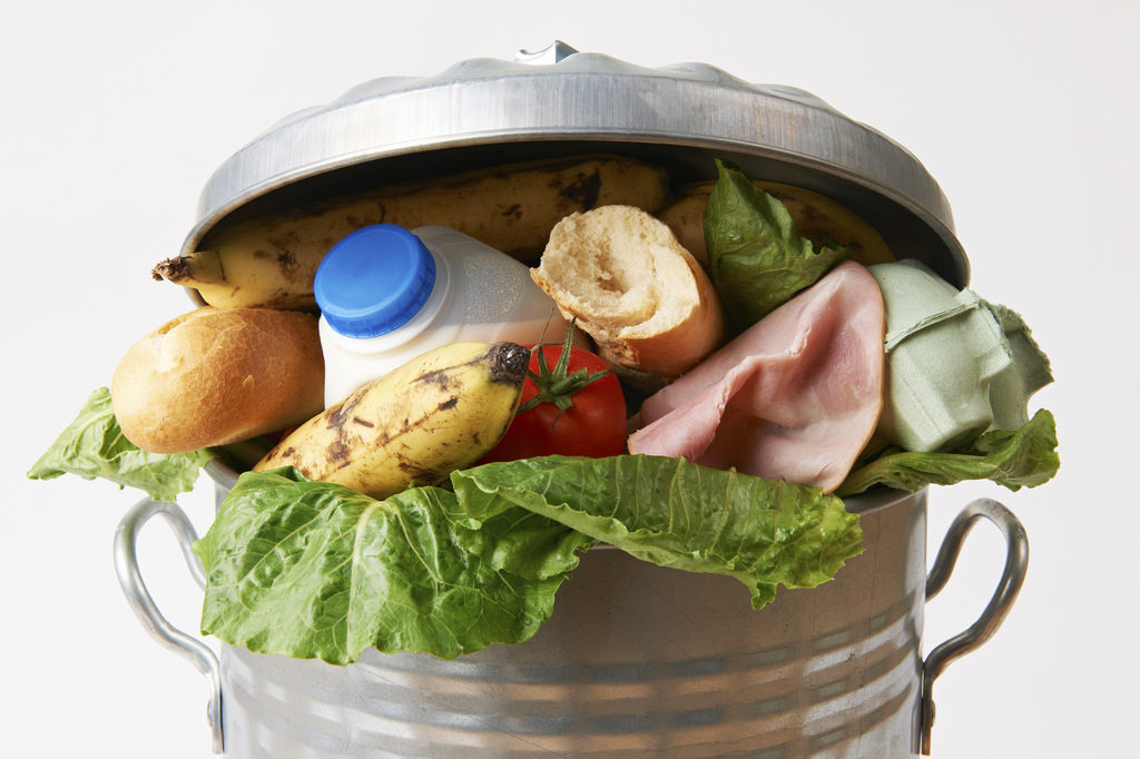Guest-imator helps hosts reduce food waste